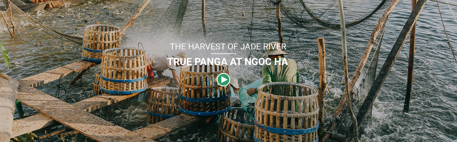 Ngoc Ha Jade River